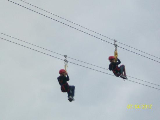 Saint John Adventures Zipline: Zipline