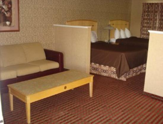 All Seasons Inn & Suites: Guest Room
