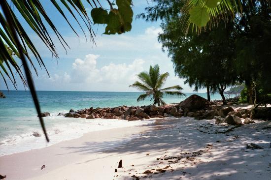 Castello Beach Hotel: Naturbucht
