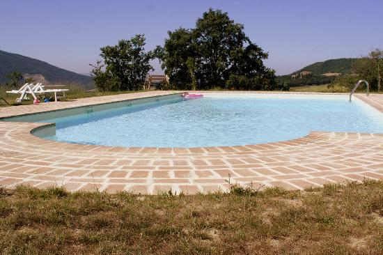 Le Ginestre Bed and Breakfast Assisi: Piscina con vista sul Monte Subasio