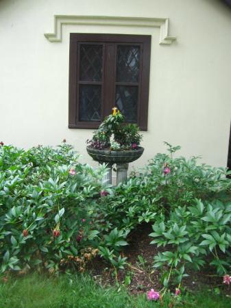 Seven Hills Inn: Garden