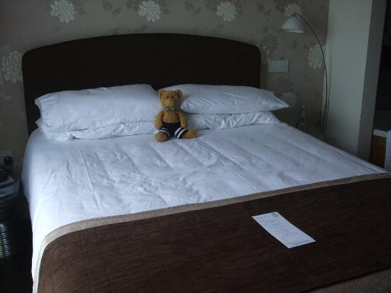 Barley House: Our Travelling Bear makes himself at home in The East Room