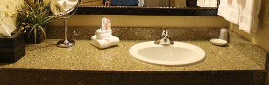 The Lodge at Deadwood: Across from the tub and toilet