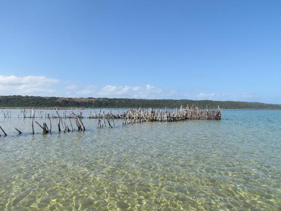 Amangwane - Kosi Bay: Fish traps