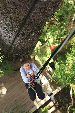 Clayoquot Wilderness Resort: Tree Climbing