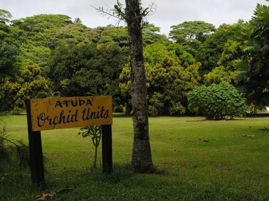 Atupa Orchid Units