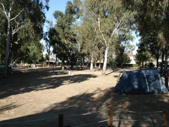 Parque de campismo Orbitur Evora: Tents and caravans area