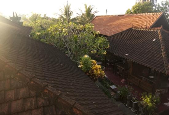 Sunrise over Puri Rama Homestay