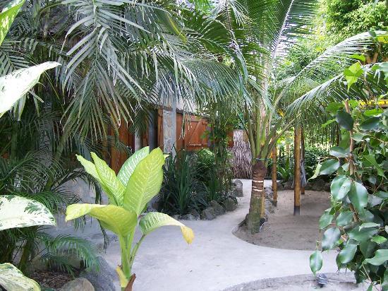 Hostal Oloncito: Hostal escondido en la vegatacion