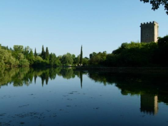 Giardino di Ninfa - Monumento Naturale: View from road across the pond upstream of Ninfa