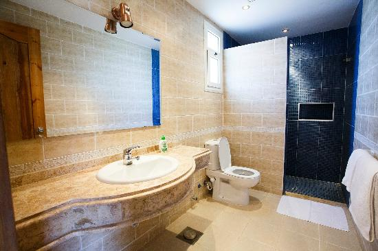 Sheikh Ali Dahab Resort: Bathroom with walk in shower
