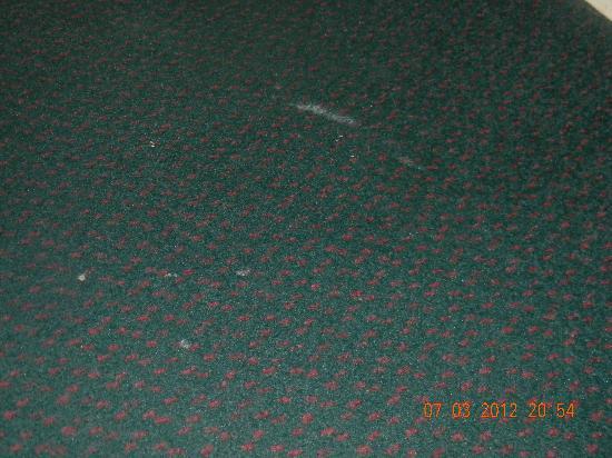 Days Inn Winona: white paint or something on carpet