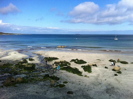 YHA Coverack: Beach - five minutes walk.