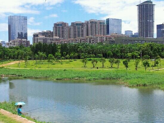 深圳中心公园