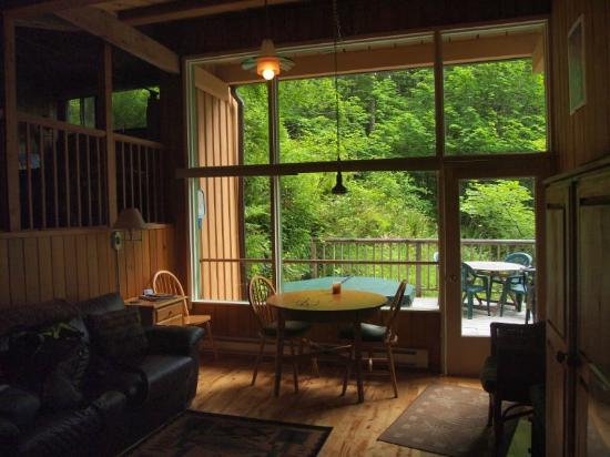 Deep Forest Cabins at Mt. Rainier : Maple Wild: living area