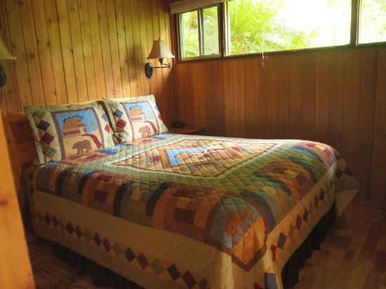 Deep Forest Cabins at Mt. Rainier : Maple Wild: bedroom (loft)