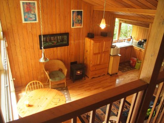 Deep Forest Cabins at Mt. Rainier: Maple Wild: looking down from bedroom loft