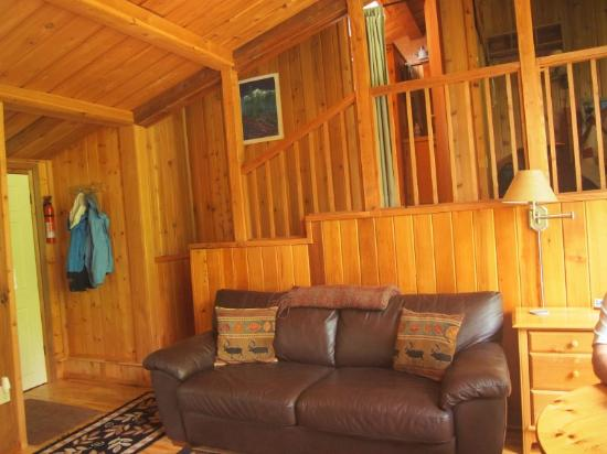 Deep Forest Cabins at Mt. Rainier: Maple Wild: Living area lookup up to loft (comfy couch)