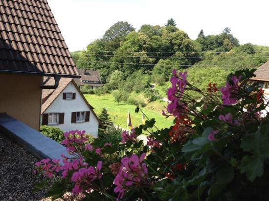Landhotel Salmen: My view from my room