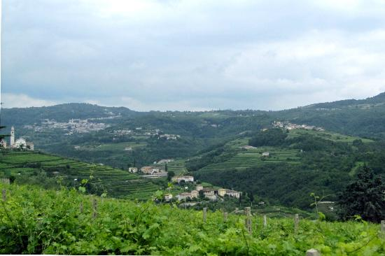 Veneto Italy and Wine: The Valpolicella Region in near Verona