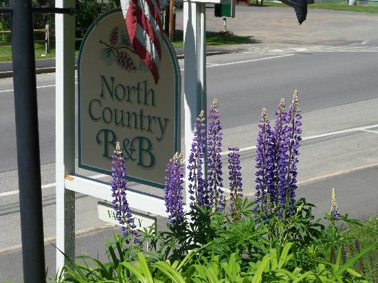North Country Inn B&B: street
