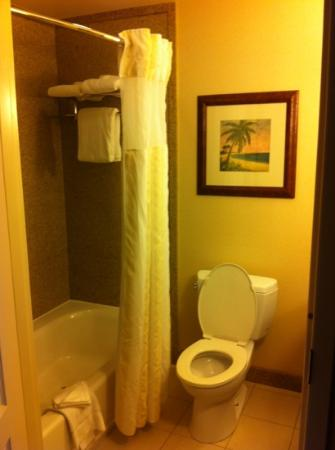 Hilton Garden Inn Mobile East Bay: shower was awesome!!
