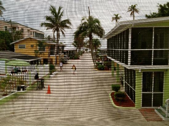 بيتشفيو كوتيدجيز: View from Porch 