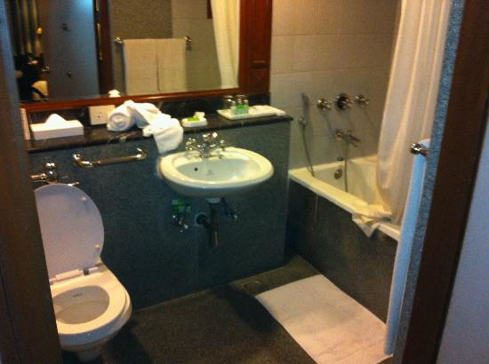 Hotel Vikram: No space for a wheelchair. Bath-tub when it should be shower, toilet to low