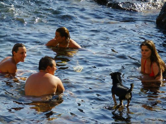 Panza, Italy: dogs even enjoy it!