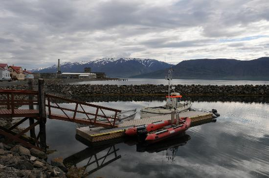 Dive the North: Hjalteyri