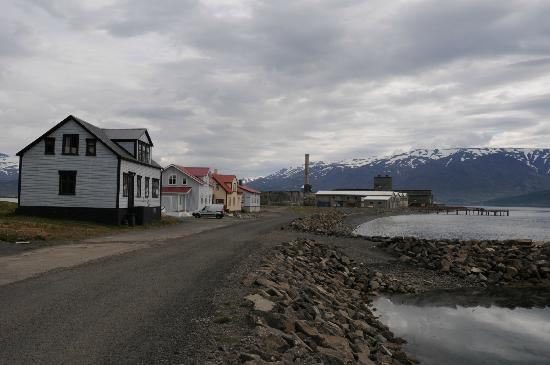 Dive the North: Herring Station