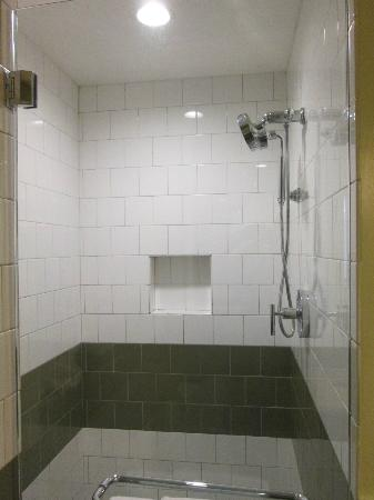 Hotel Indigo Athens-University area: Shower