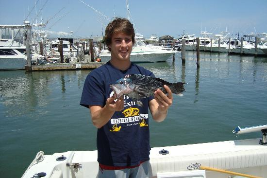 Defiant Charters Day Tours: nice size sea bass