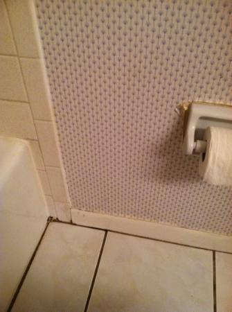 Beach Place Condos at John's Pass Village: unit #407 filthy bathrooms, dirty throughout condo