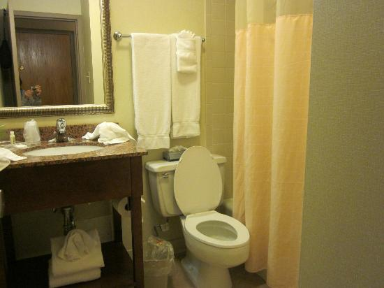 Holiday Inn Rutland-Killington Area: Bathroom