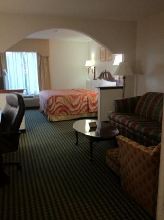 Best Western Mcdonough Inn & Suites : King room