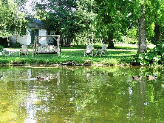 Taraden Bed and Breakfast: Pond overlooking Cottage