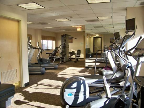 Holiday Inn Chicago Downtown : Fitness center