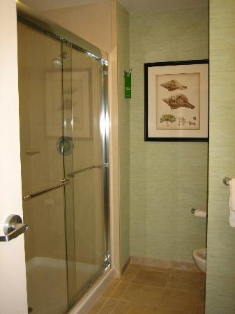Hampton Inn & Suites Swansboro / near Camp Lejeune at Bear Creek Gate: Hampton Inn & Suites Swansboro - bathroom