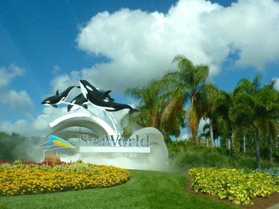 Days Inn Orlando Convention Center/International Drive: Sea Word, próximo ao Apartamento