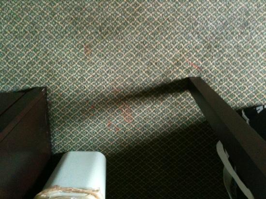 The Milton Hotel: stained carpet