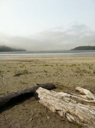 ‪‪Pachena Bay Campground‬: The beach on a foggy day