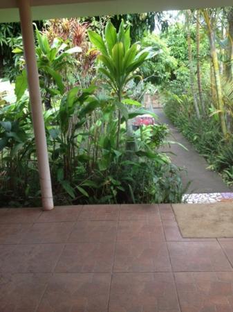 Hostal Chez Oscar: jardin