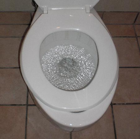 Tremendous Cutting Corners Toilet Seat Almost Fits Picture Of Caraccident5 Cool Chair Designs And Ideas Caraccident5Info