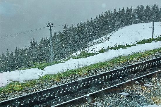 Alpin Center Interlaken : Cog wheel railway track for Jungfraubahn
