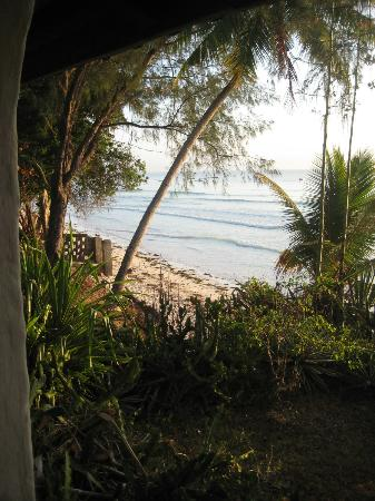 Diani Beachalets: View from the balcony of one of the chalets