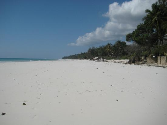Diani Beachalets: The beach at the edge of the grounds