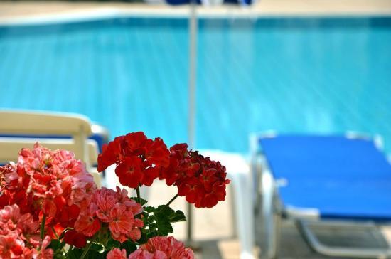 Neraida Studios: Swimming Pool
