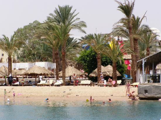 Sindbad Aqua Hotel & Spa : Beech