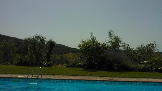 Fattoria Poggerino: lovely views from the pool area